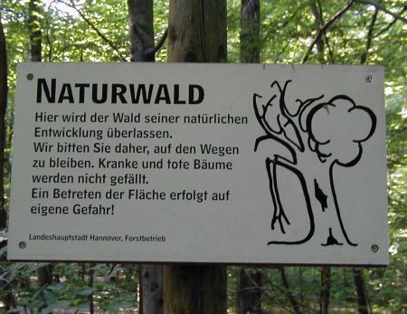 Naturwald -- Hier wird der Wald seiner natürlichen Entwicklung überlassen. Wir bitten sie daher, auf den Wegen zu bleiben. Kranke und tote Bäume werden nicht gefällt. Ein Betreten der Fläche erfolgt auf eigene Gefahr.
